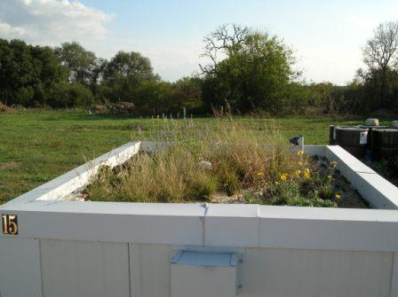 A Rooftop Container with Perlite