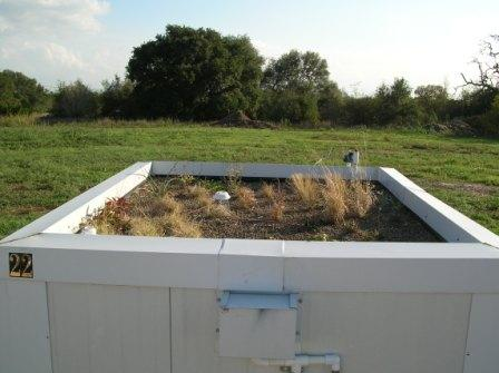 A Rooftop Container without Perlite